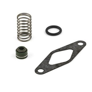 Motorize – Aprilia RS 125 Slide RAVE AS joint ressort Simmerring®