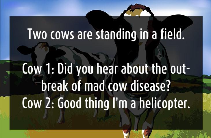 Really Stupid Funny Jokes