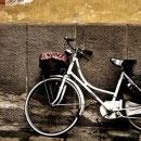 big-al-bike-thumb-130x130