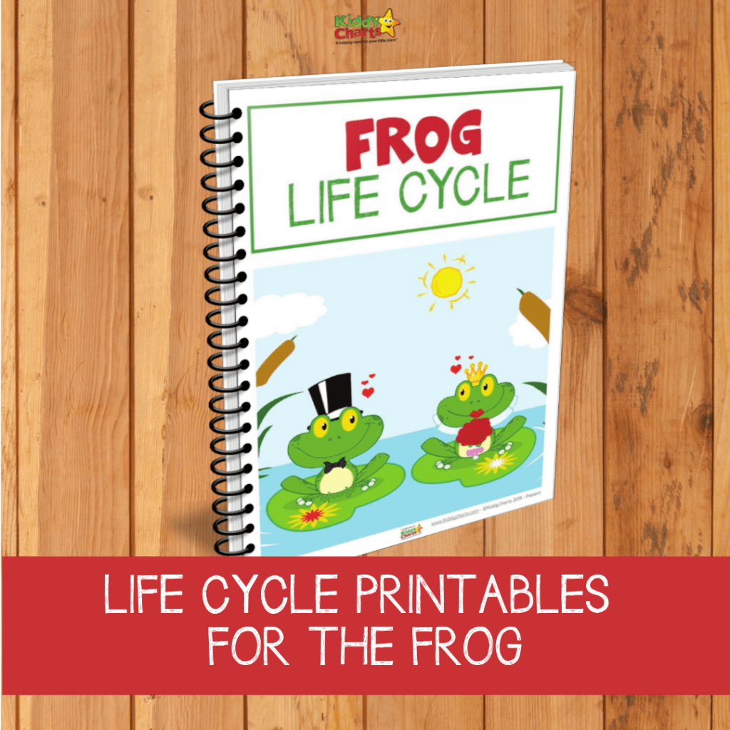 Frog Life Cycle Printabes Get To Know Your Tadpoles