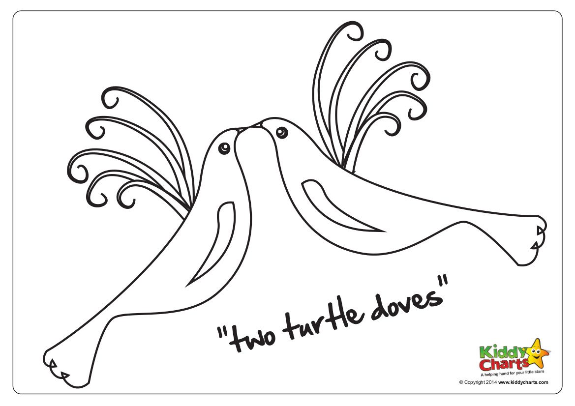 On the second day of Christmas.. two turtle doves