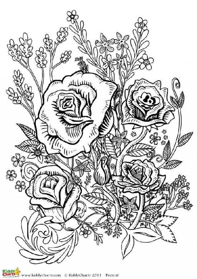 Four free flower coloring pages for adults | coloring pages for adults flowers