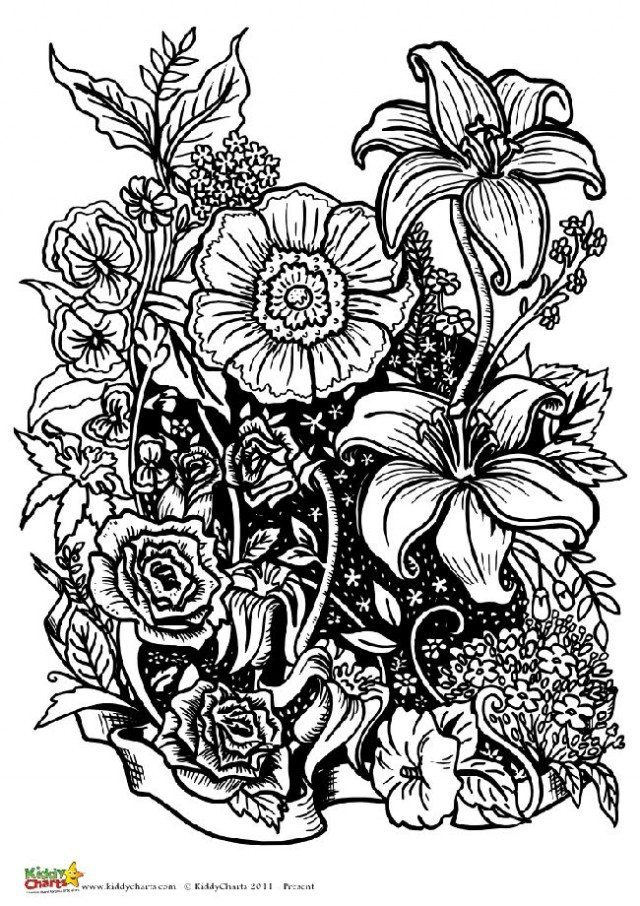 Four free flower coloring pages for adults | colouring pages for adults flowers