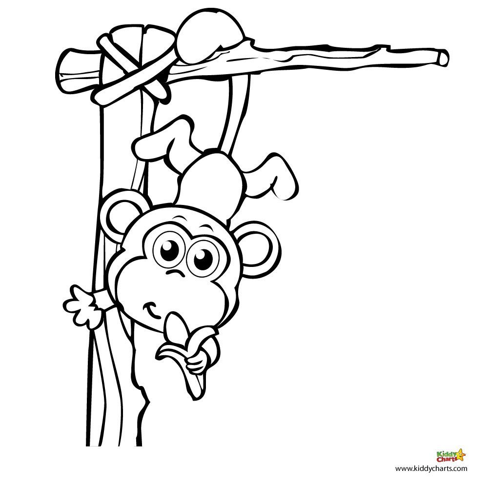 Monkey coloring pages: A monkey for your monkey