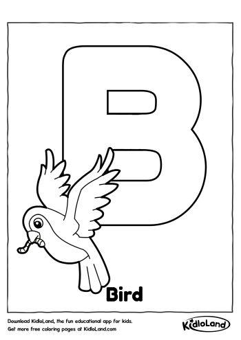 All Worksheets » Bird Worksheets For Preschoolers