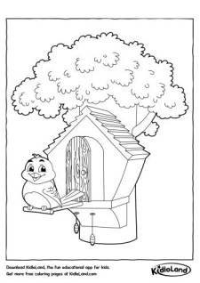 Download Free Birds and educational activity worksheets