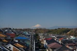 hodogaya_fuji
