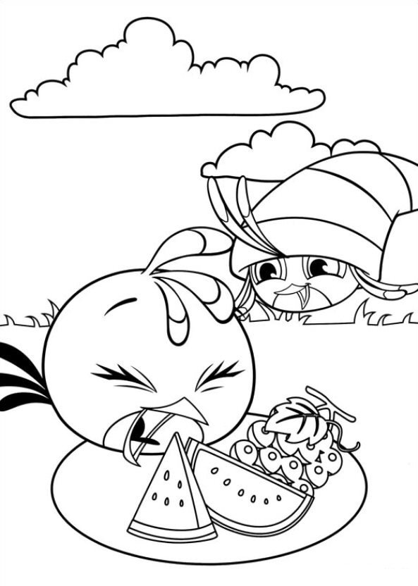 2 Girls Birds Angry Wars Pages Star Coloring