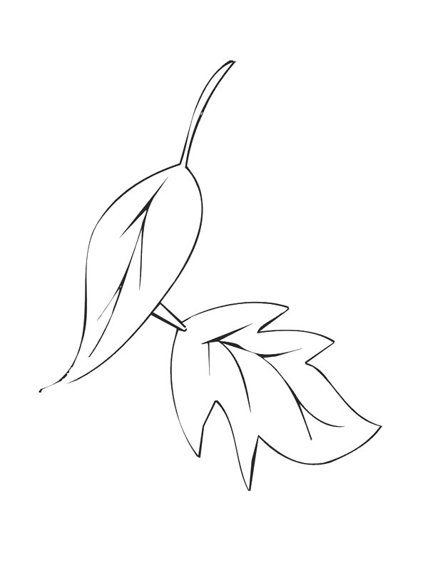 39 Coloring Pages Of Leaves