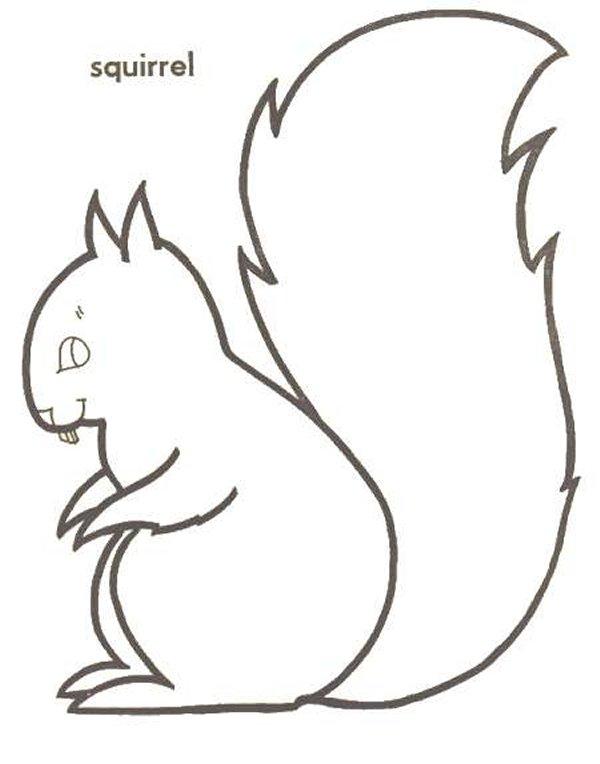 Kids-n-fun 13 Ausmalbilder von Eichhörnchen