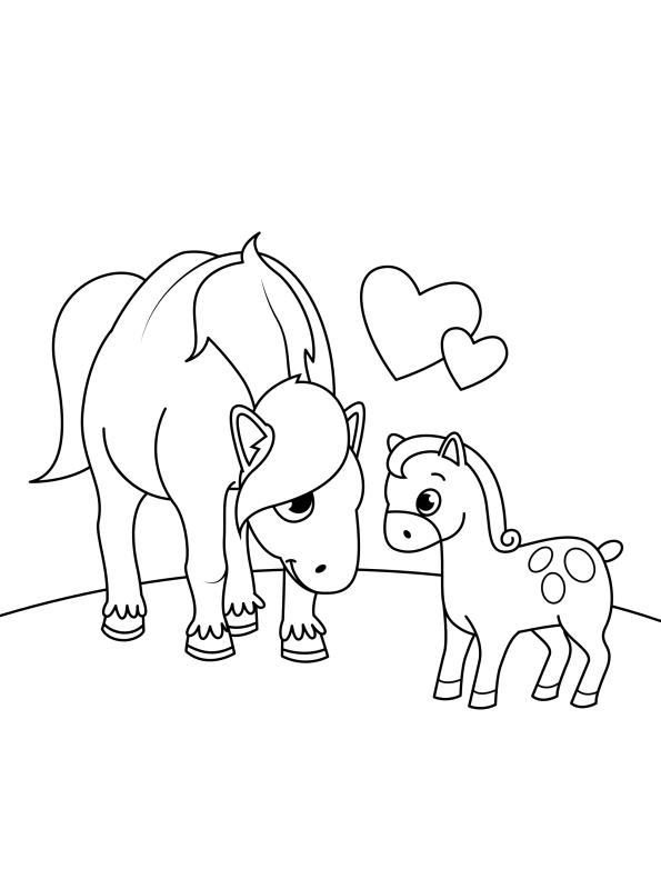 Kids-n-fun Malvorlage Pferde Kinder Fohlen