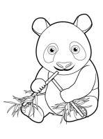 Kids n fun.de   Malvorlage Panda Panda