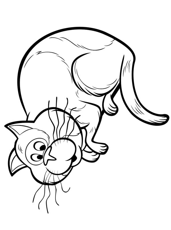 Kids-n-fun Malvorlage Soul Sprechende Katze