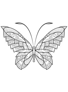 Kids-n-fun 18 Ausmalbilder von Schmetterlinge schwer