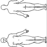 Kids n fun   Kleurplaat Menselijk lichaam De man