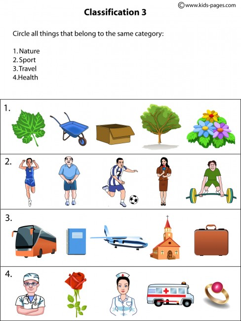 Classification3 Worksheet