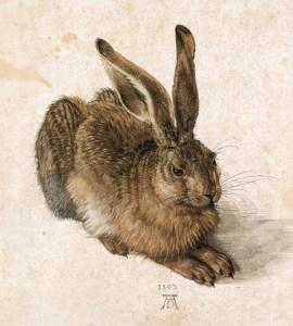 Albrecht-Durer_Young-Hare