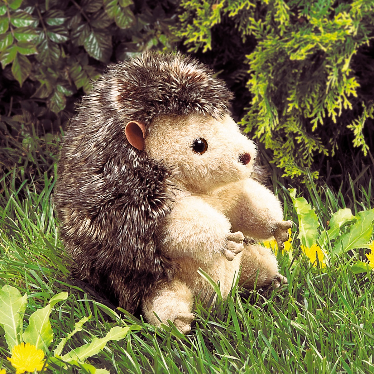 Hedgehog Hand Puppets By Folkmanis Puppets MPN 2192