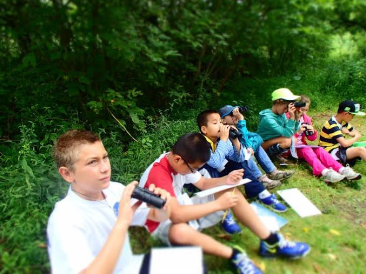Exploring Upper St. Clair's Outdoor Classroom, Photo courtesy of the Outdoor Classroom
