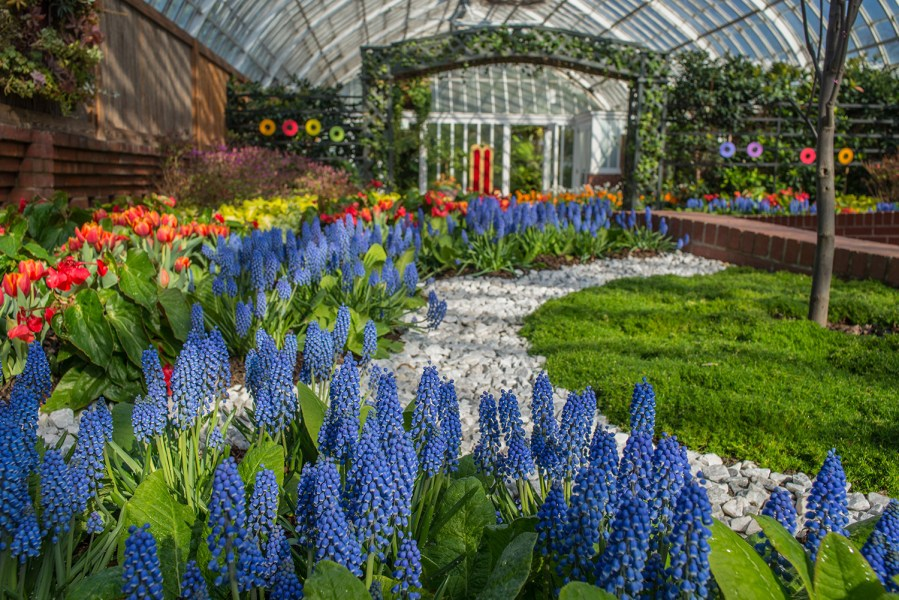 From Our Sponsor Celebrate Spring At Phipps Pittsburgh Is Kidsburgh