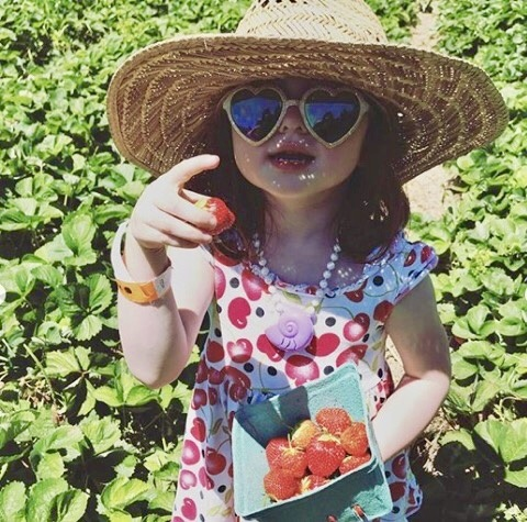 7 pick-your-own Pittsburgh farms where kids can eat the rainbow!