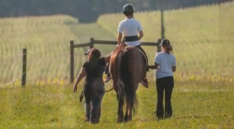For Pittsburgh kids with special needs, equine therapy is more than horseplay: It's life-changing.