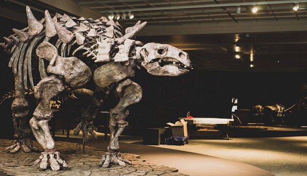 11 things to do with kids this week in Pittsburgh, from dinosaurs to pick-your-own blueberries