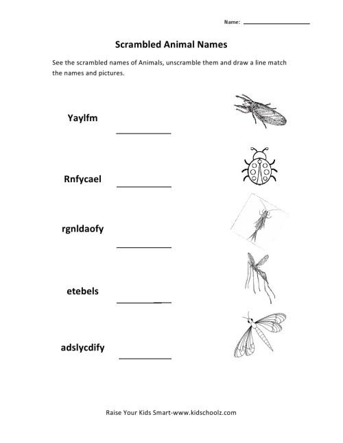 small resolution of animal worksheet: NEW 808 ANIMAL WORKSHEET GRADE 1