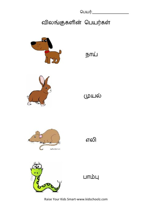 small resolution of Tamil - Animals Name Worksheet 2 - Kidschoolz
