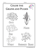 Printables for Grains And Pulses, Worksheets for Grains