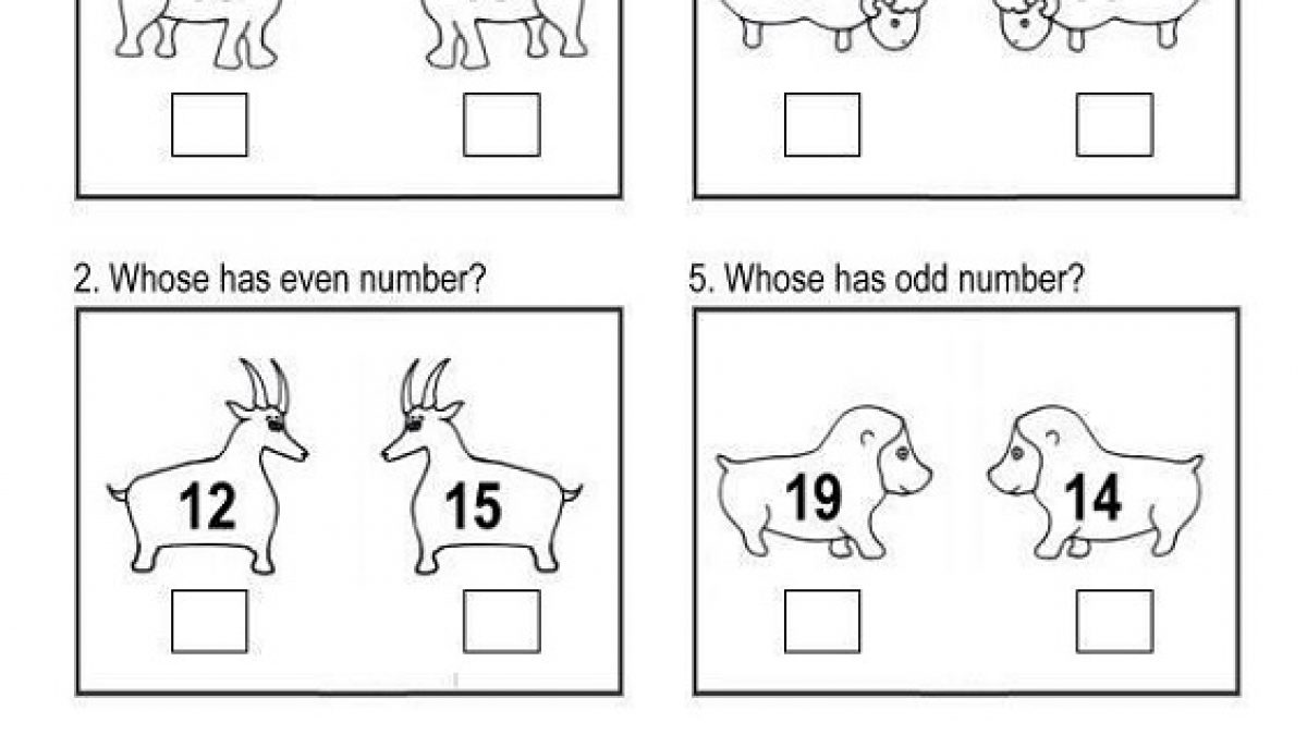 hight resolution of Even and Odd Worksheets 1st Grade