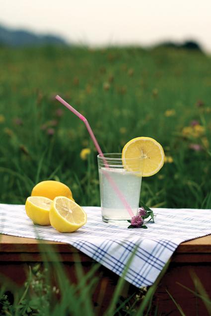 Lemons_Gordana2 Heilkraft der Zitrone
