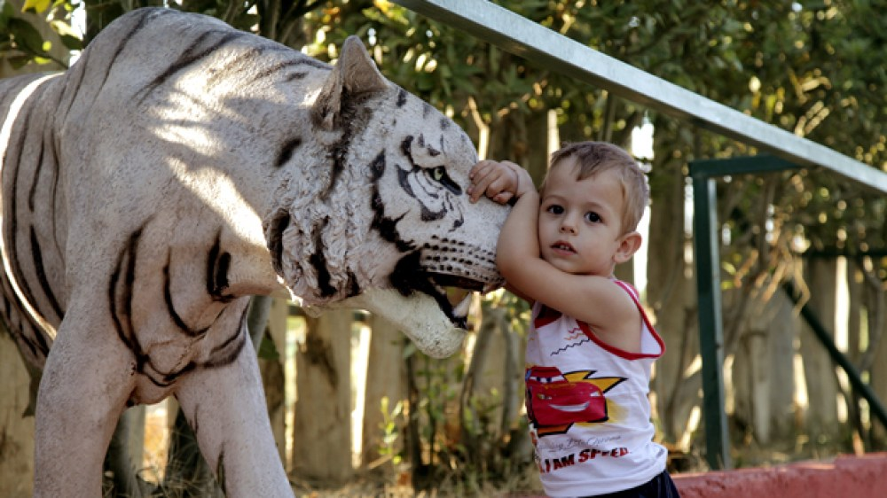 Αττικό Ζωολογικό Πάρκο