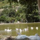 Botanical Park & Gardens of Crete
