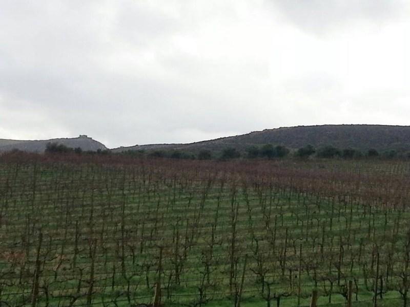 Paterianaki Winery