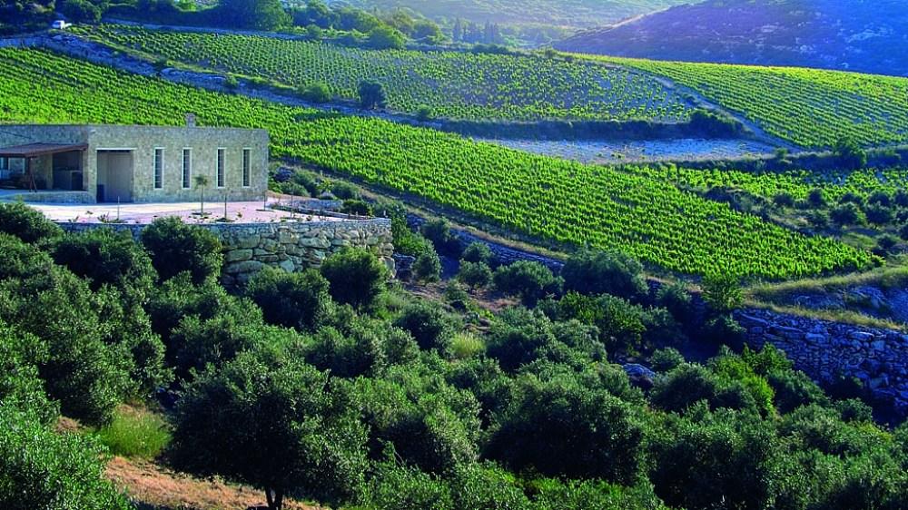 Rhous Winery