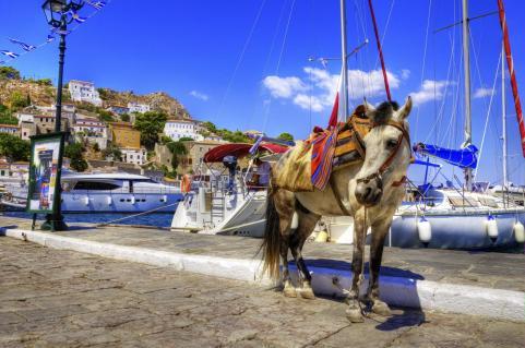 donkey ride at Hydra port