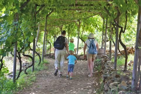 Botanical park family walk