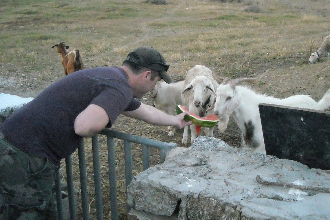 activities for families Cyclades family visit to an animal and organic farm on mykonos kids love greece greek culture