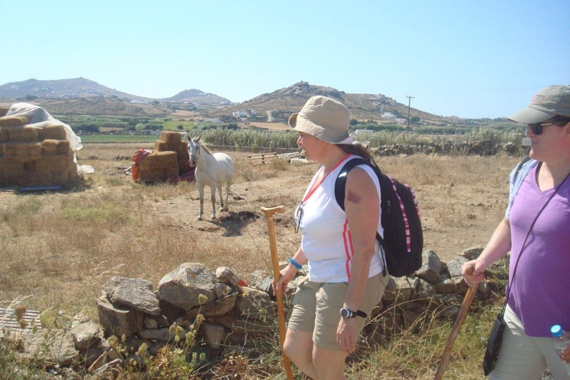 kids love greece activities for families Cyclades guided family hiking adventure in Mykonos island