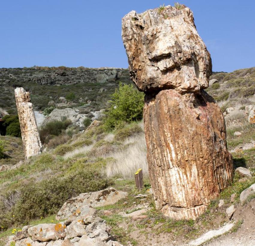 Petrified Lesbos Park