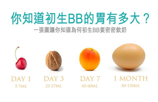 一張圖看懂為何BB要密密餵奶