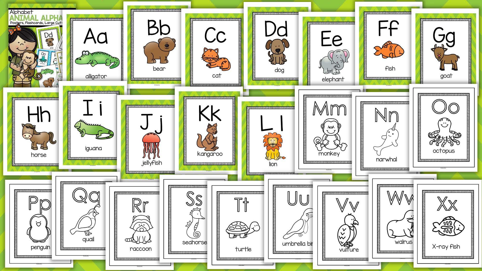 Pre Kindergarten Themes