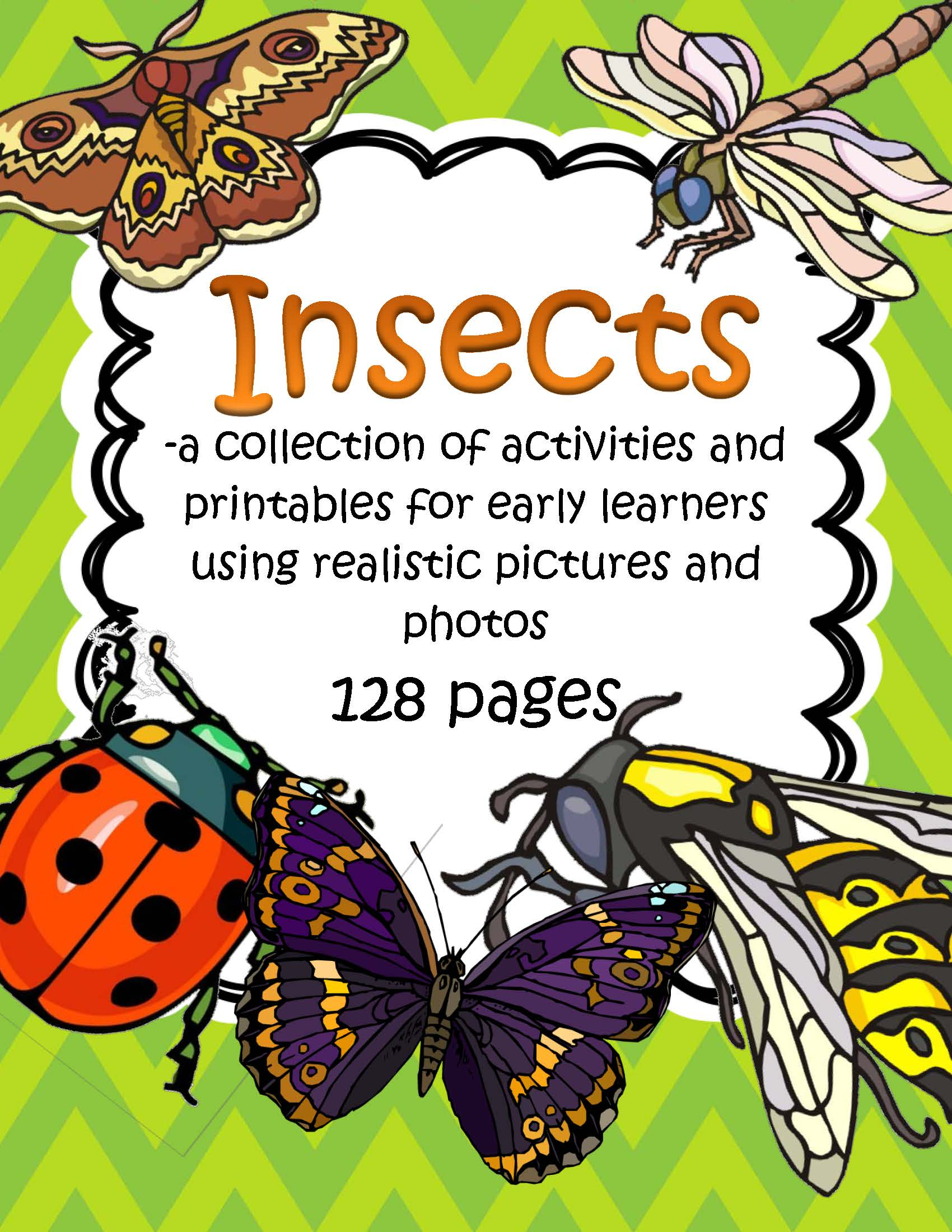 Insects Activities And Printables 128 Pages Realistic Graphics