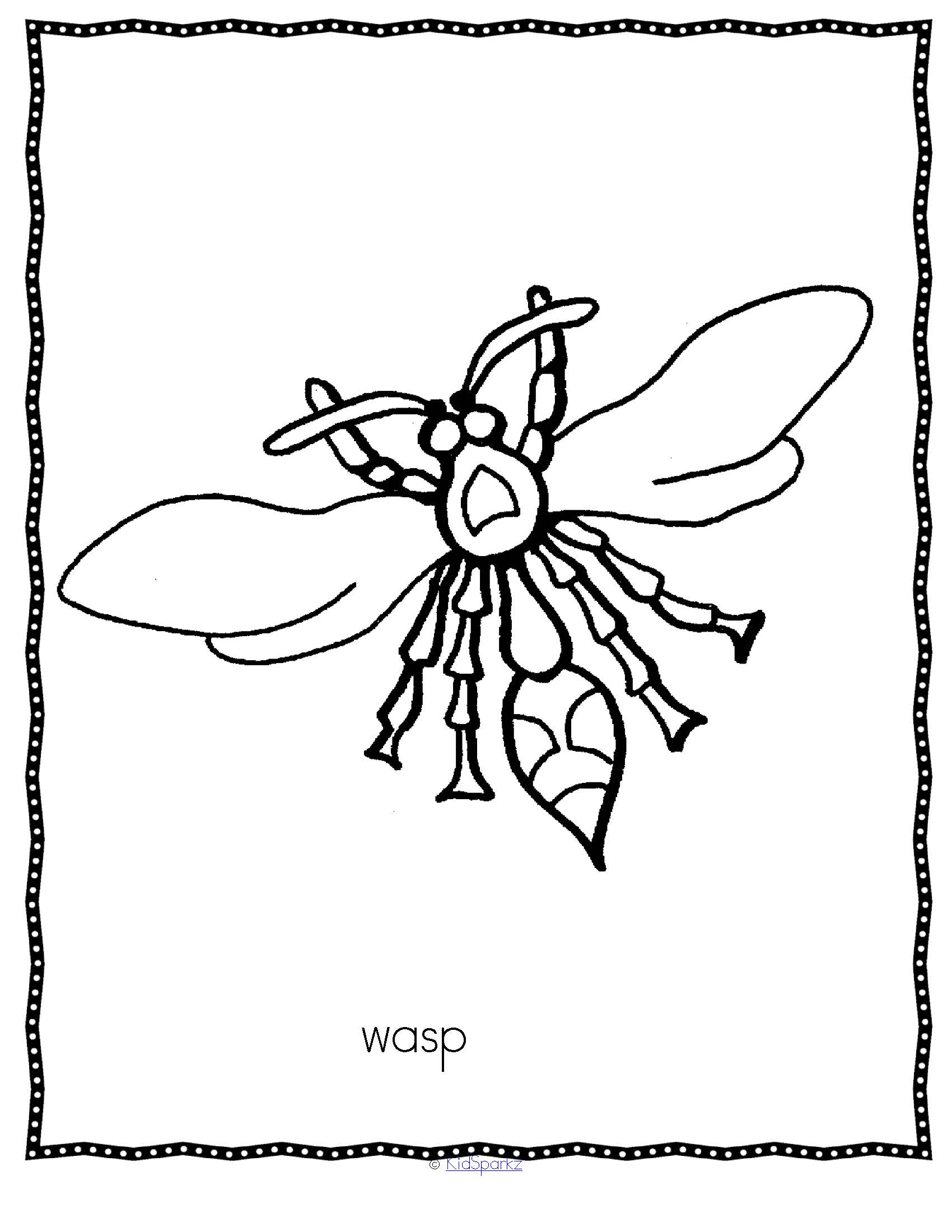 INSECTS Activities and Printables 128 pages- realistic