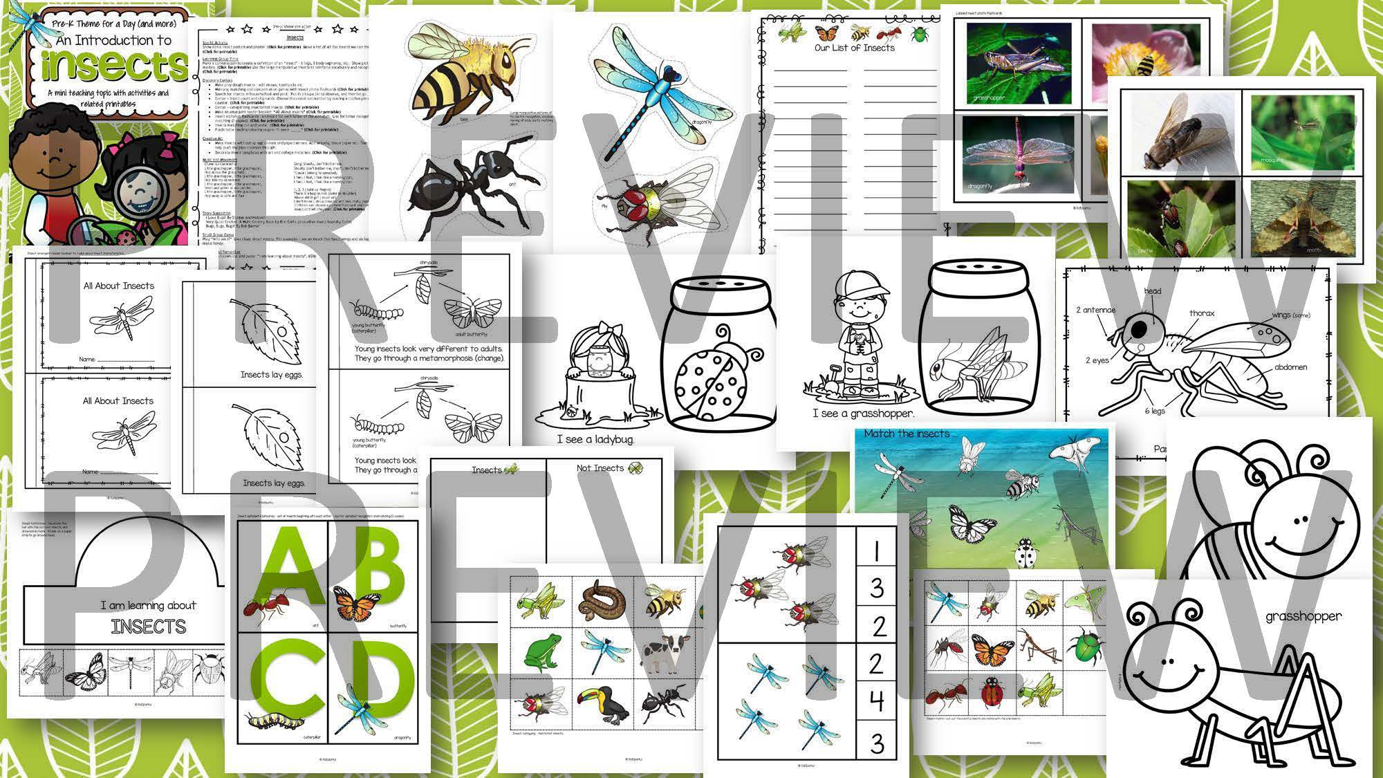 Insects Introduction Math Science And Literacy Centers