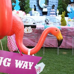 Elmo Table And Chairs High Back Plastic Patio Disney Frozen Birthday Party | Kids Space