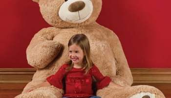 The 6 Foot Teddy Bear