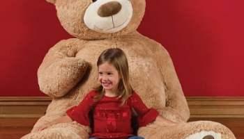 The 6 Foot Teddy Bear