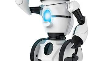 The Gesture Controlled Gyrobot